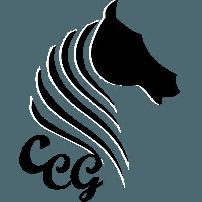 constanza-gonzalez-coaching-con-caballos-favicon-512x512_opt-1.png